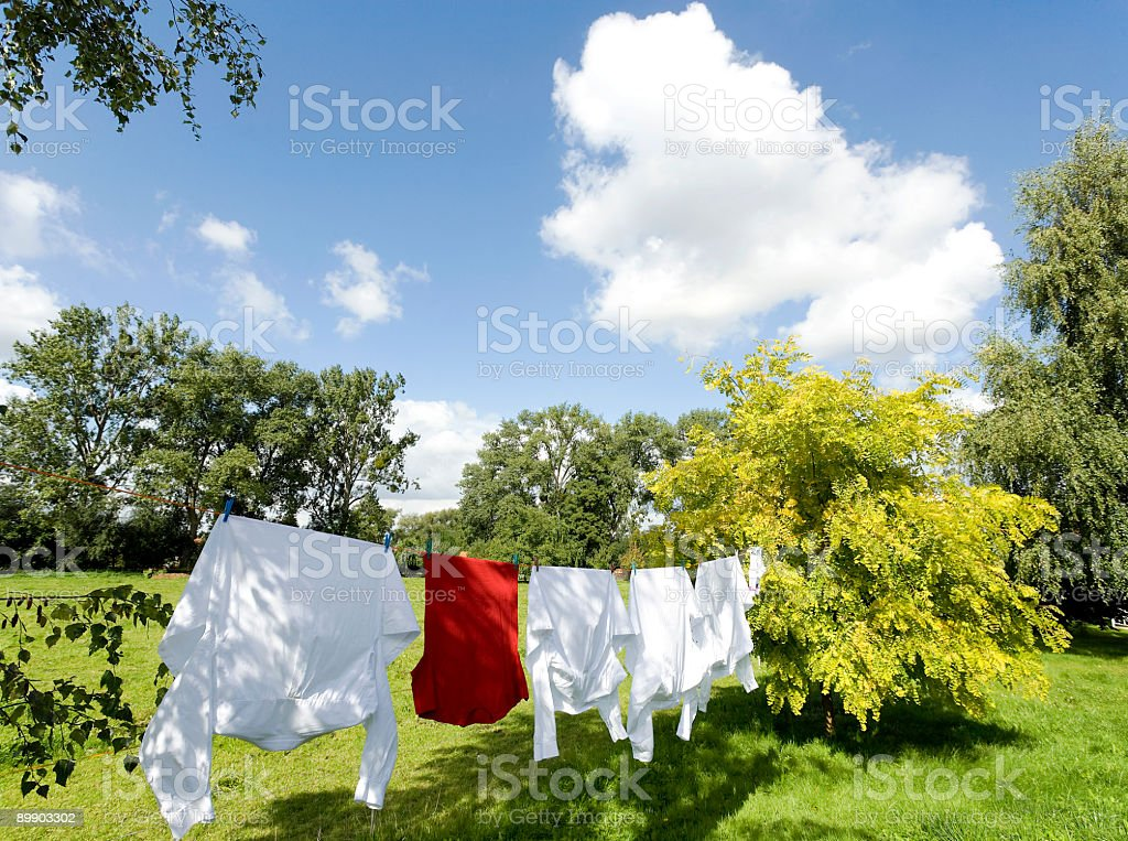 Clothesline with white and red shirts outdoors in garden (XL) royalty-free stock photo