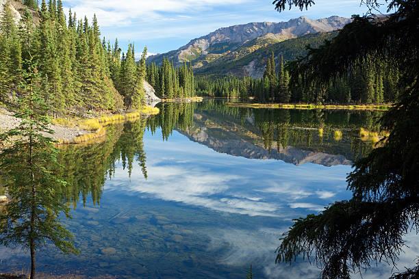 cloud reflections in horseshoe lake in alaska - denali national park bildbanksfoton och bilder