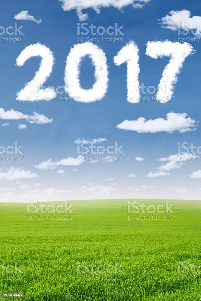 Cloud shaped number 2017 in the meadow zbiór zdjęć royalty-free