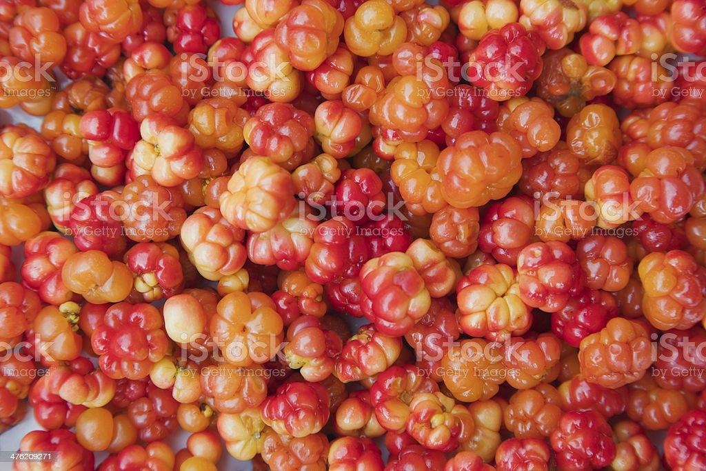 Cloudberries royalty-free stock photo