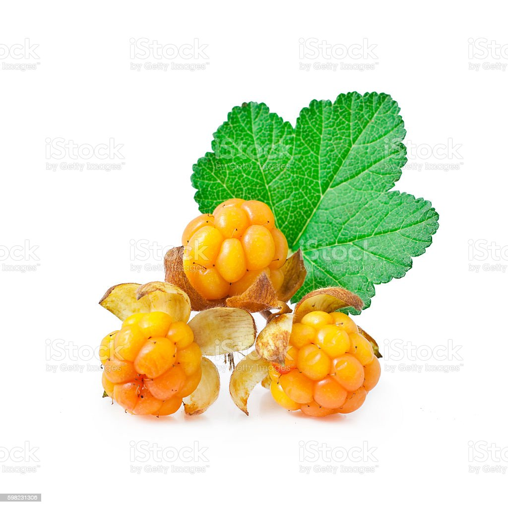 Cloudberry with leaves foto royalty-free