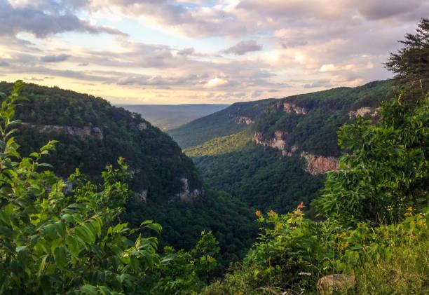 cloudland canyon - canyon stock-fotos und bilder
