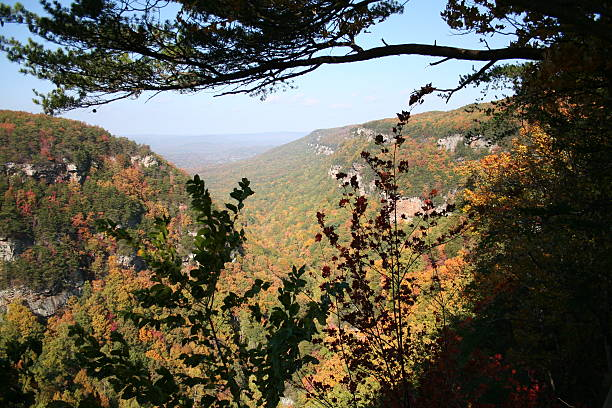 Cloudland Canyon State Park, Georgia in Fall Colors stock photo
