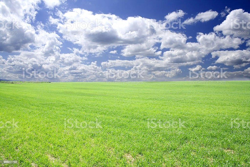 Clouds and field royalty-free stock photo