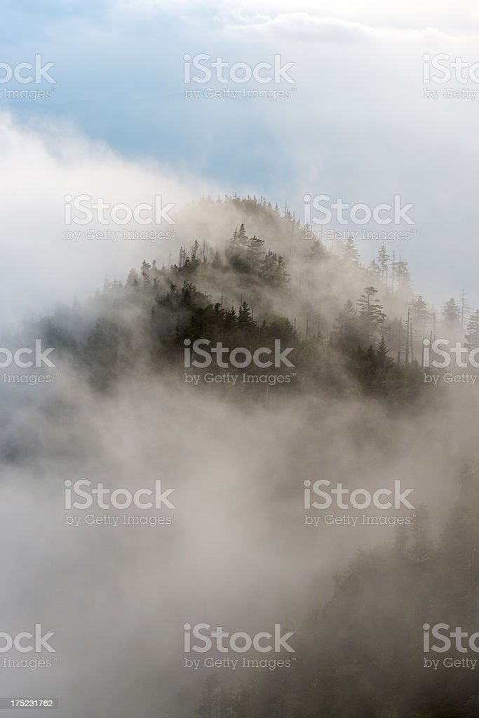 Misty mountain at dusk in Great Smoky Mountains National Park stock photo
