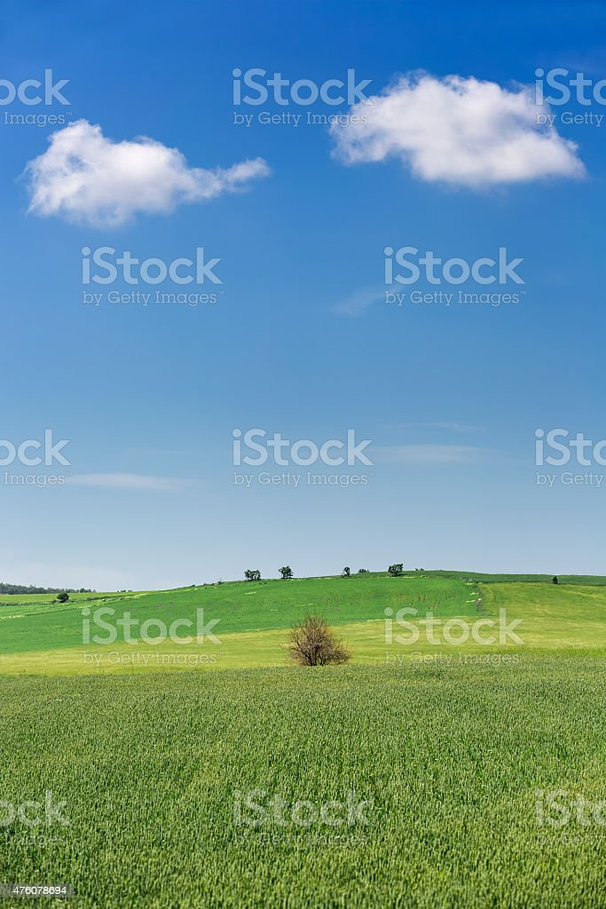 clouds and green fields stock photo