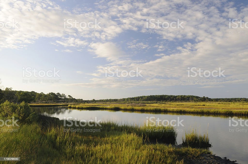 Clouds and Marsh royalty-free stock photo