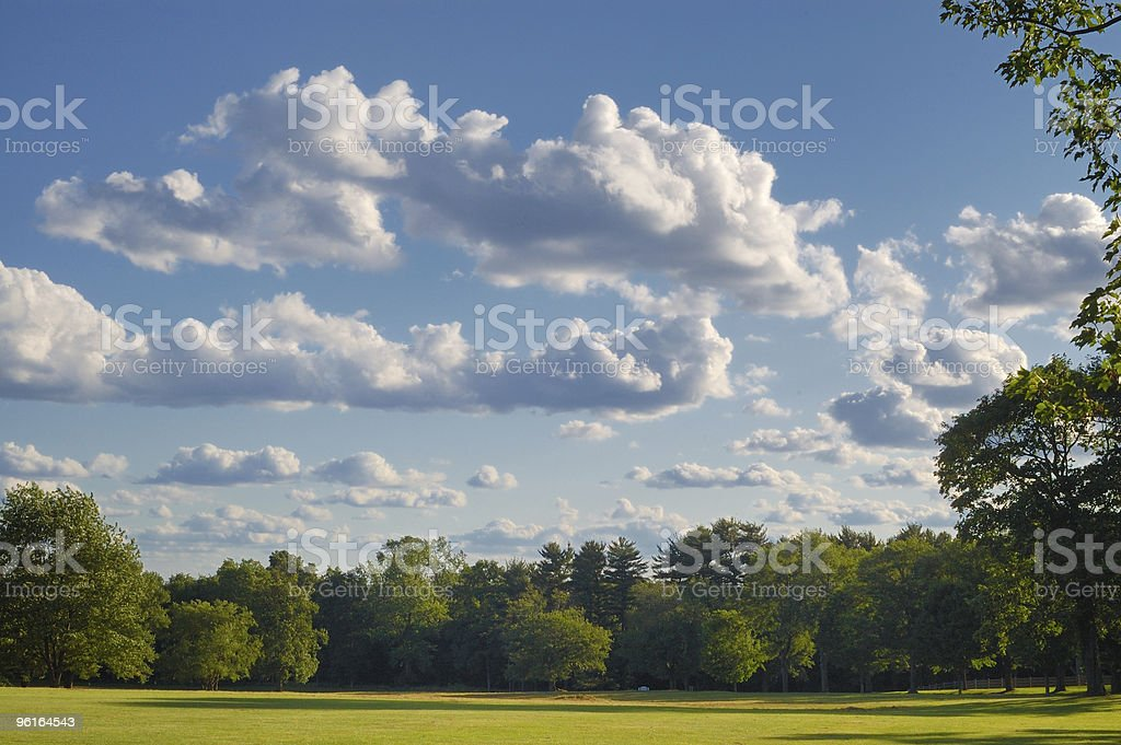 Clouds and shadows over tree lined meadow in summer. royalty-free stock photo
