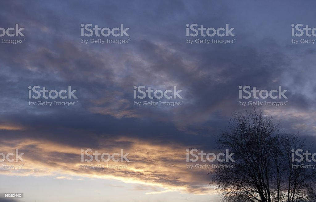Clouds at Sunset with Silhouette Trees on the right royalty-free stock photo