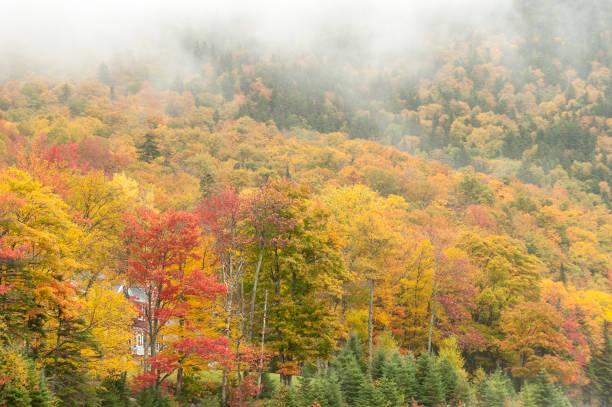 wolken kleurrijke gebladerte new hampshire - dixville notch stockfoto's en -beelden