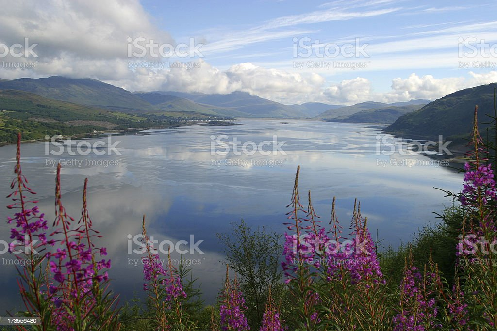 clouds in lake royalty-free stock photo
