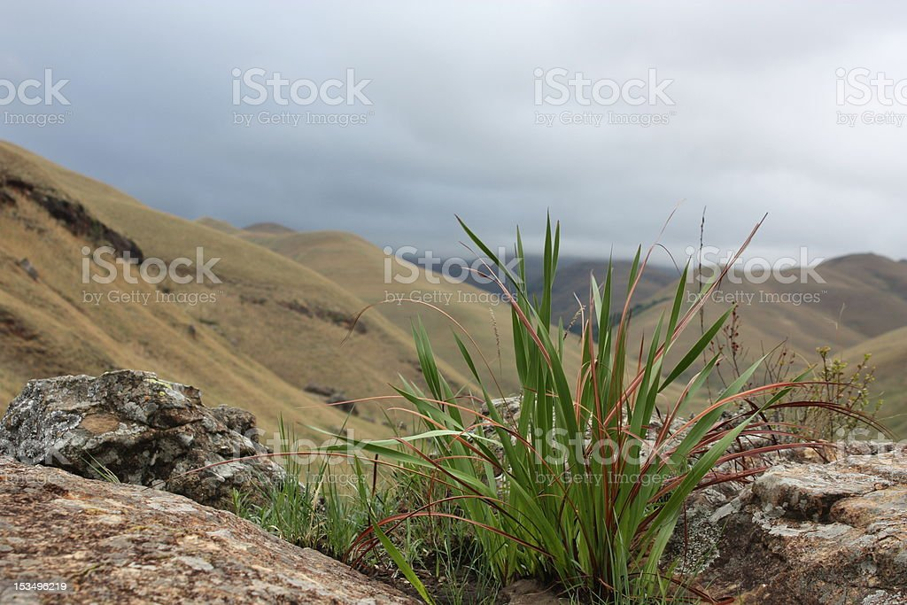 clouds in Monks Cowl, Drakensberg stock photo