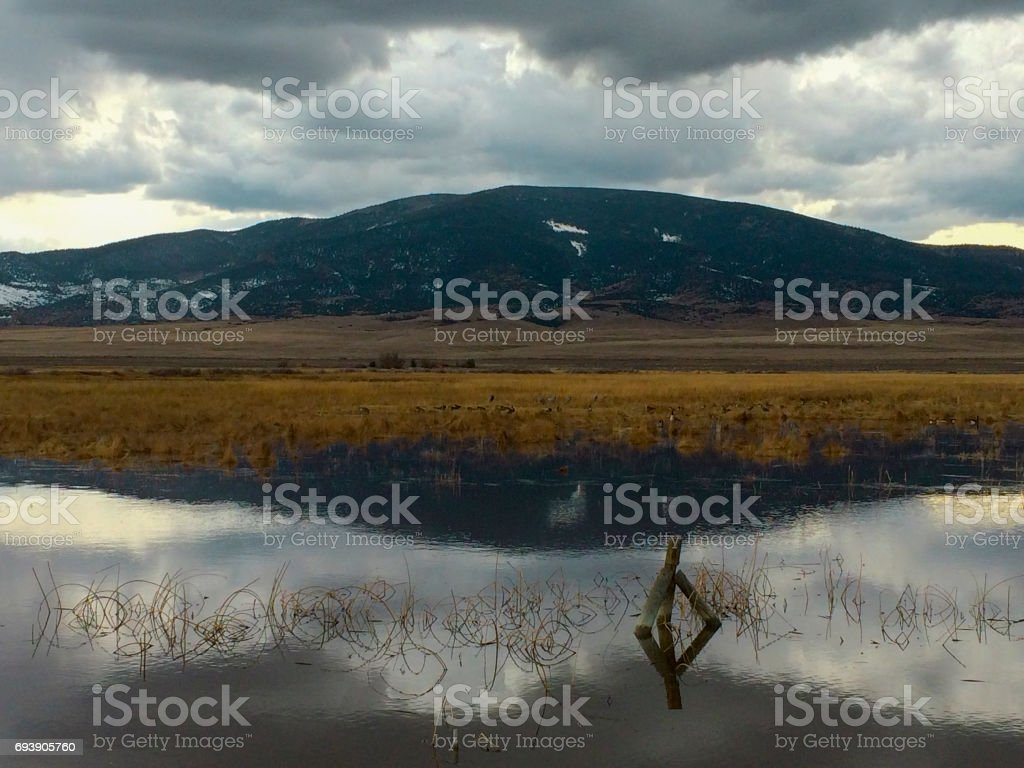 Clouds reflected in water with fencepost stock photo