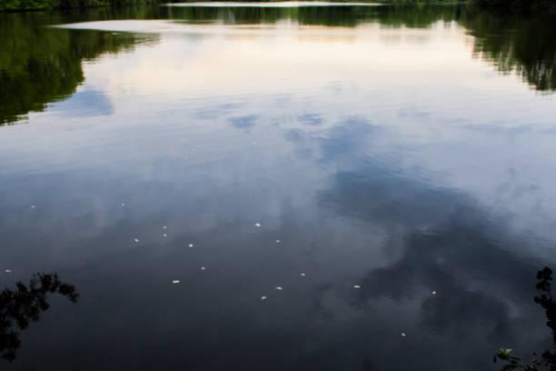 Wolken, die auf einem See reflektieren – Foto