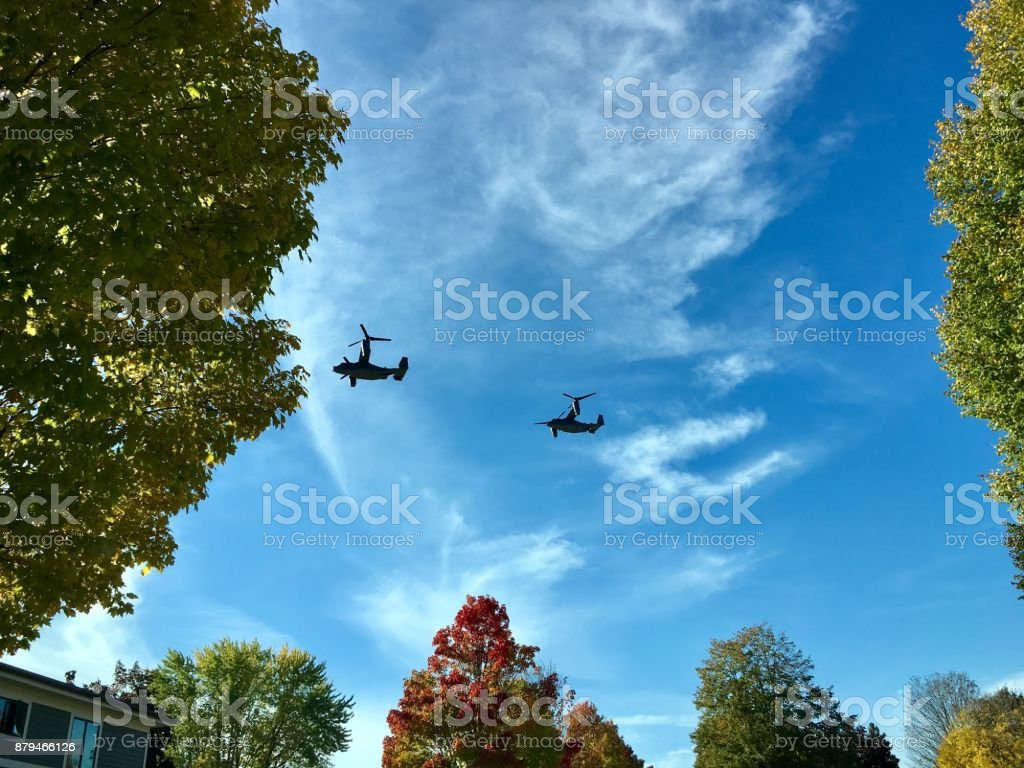 Clouds, trees and Planes stock photo