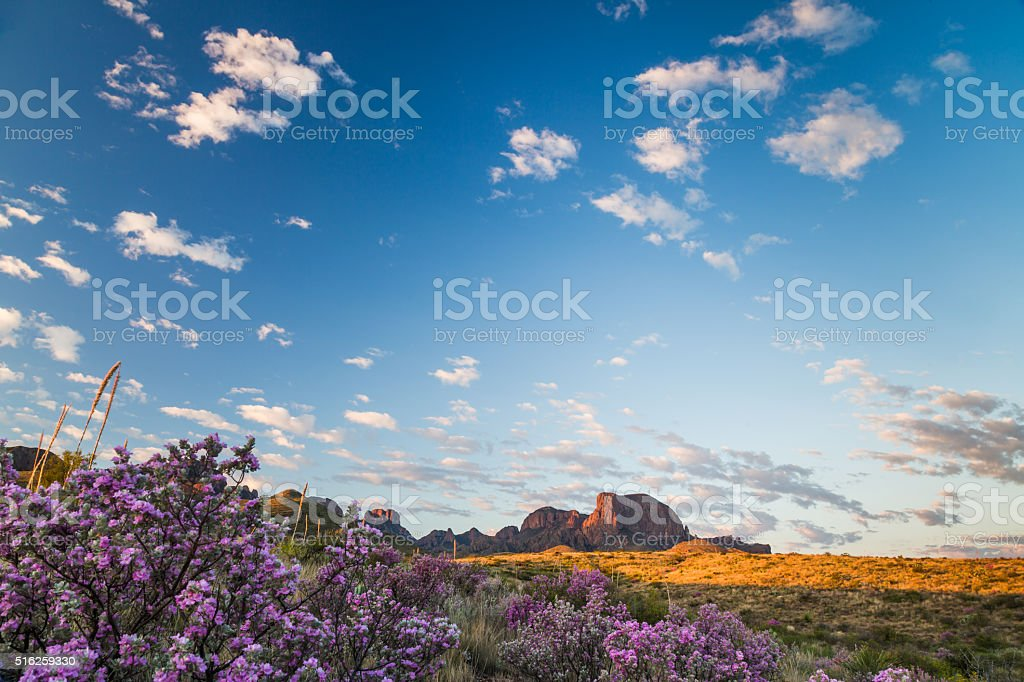 Cloudscape above sagebrush at the Chisos stock photo