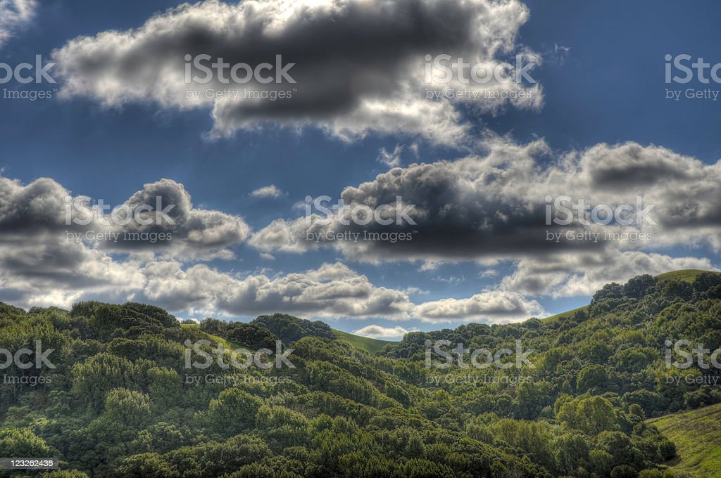Cloudscape and Trees (HDR) stock photo