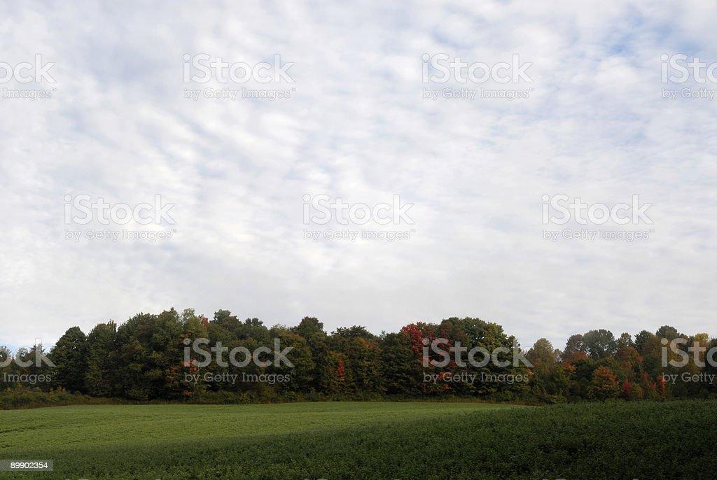 Día nublado en otoño foto de stock libre de derechos