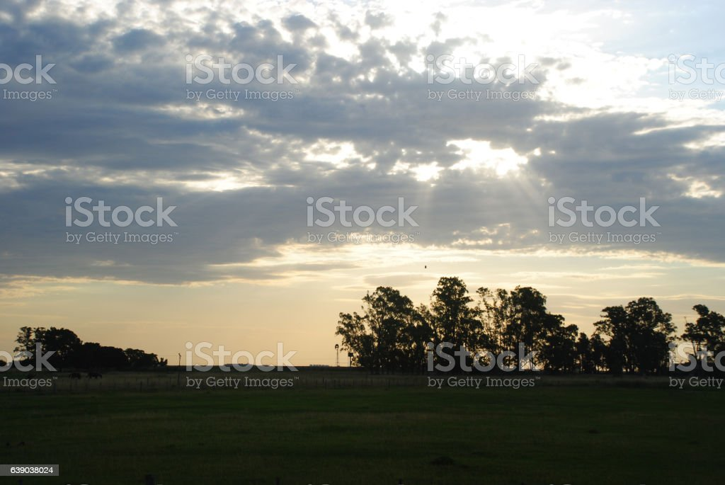 Cloudy Field with sun rays stock photo