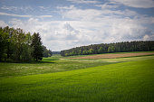 Cloudy forest landscape in upper palatinate
