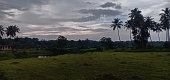 Rice field flooded with water under cloudy sky , a view from Kerala