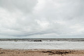 Wide shot of coastline with seaweed on beach, overcast, remote location, seascape