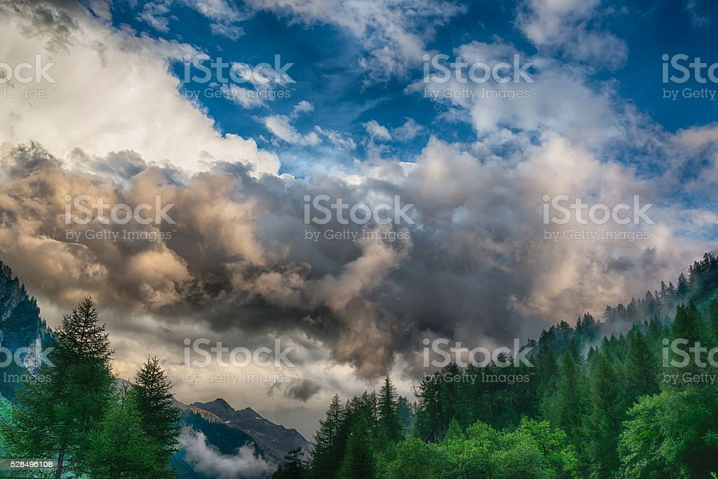 Cloudy sky over the forest stock photo