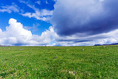 Summer arctic landscape - grassy rocky tundra under a blue sky with clouds\