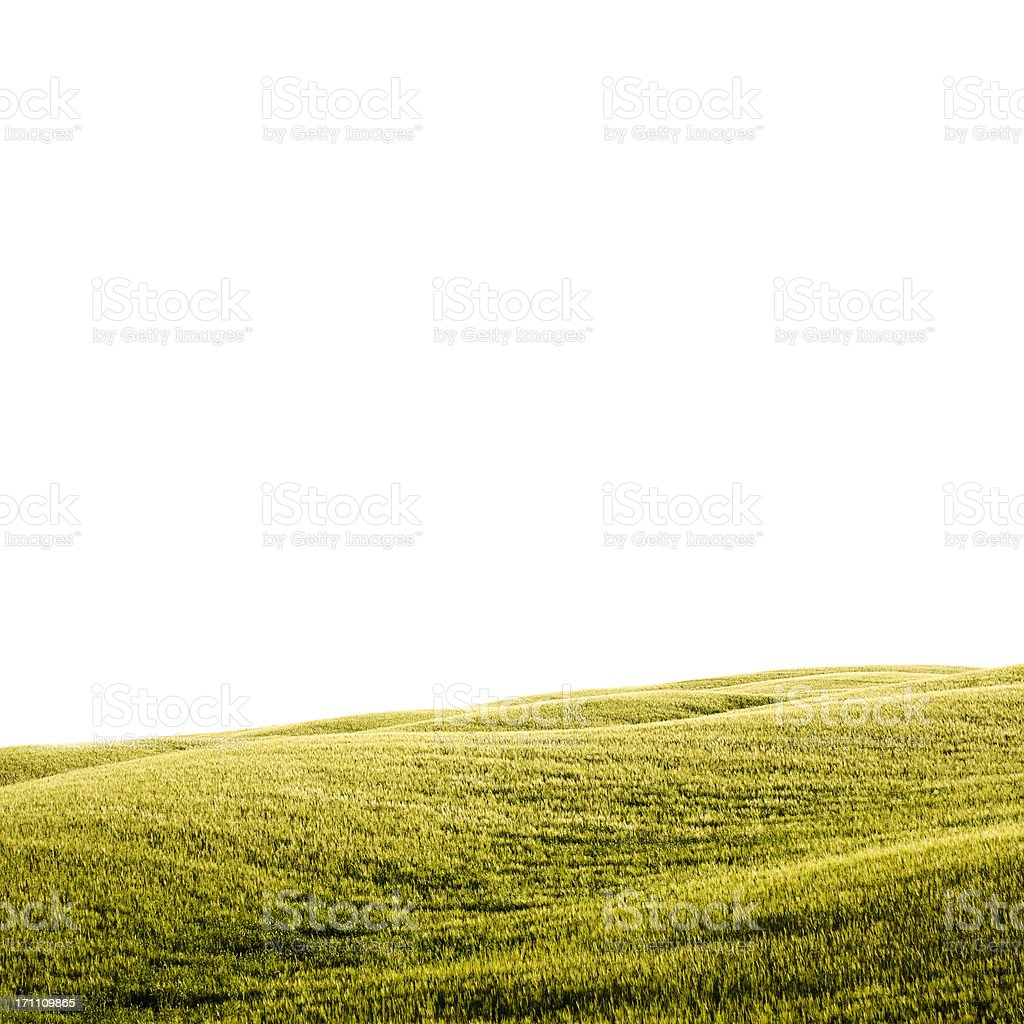 Cloudy tuscany landmark in spring with white background royalty-free stock photo