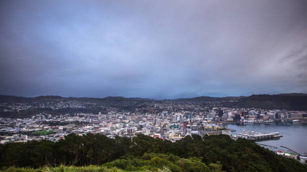 Cloudy Wellington Cityscape A view over the city of Wellington, the capital of New Zealand, from the lookout on the summit of Mount Victoria. In the centre is the marina and Te Aro, with the other neighborhoods spreading out up the hills away from the harbour. It is a cloudy, dull morning. mt victoria canadian rockies stock pictures, royalty-free photos & images