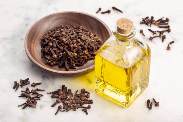 Clove essential oil stock photo