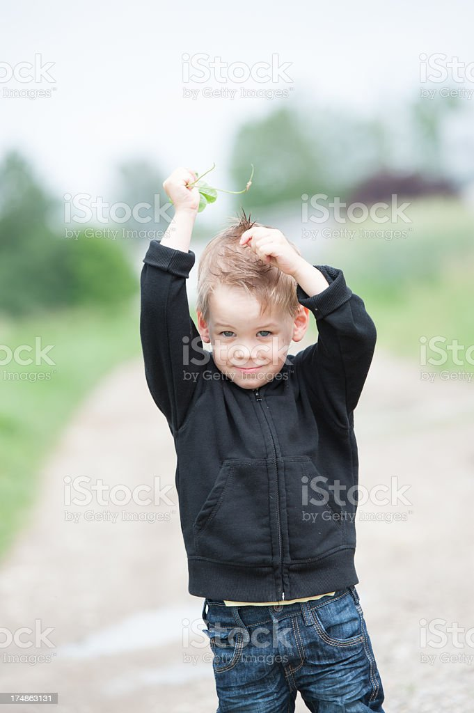 Clover in hand royalty-free stock photo