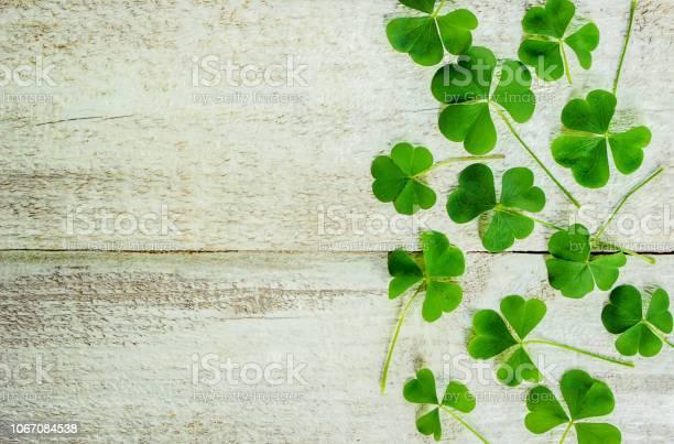 Clover leaf happy st patricks day selective focus picture id1067084538?b=1&k=6&m=1067084538&s=612x612&h=cytgjqi5 nfupp6ebf s2yis fqnetjt70p3j qoac0=