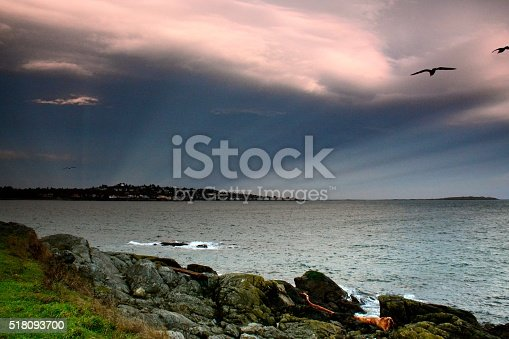 Clover Point Stock Photo & More Pictures of British Columbia