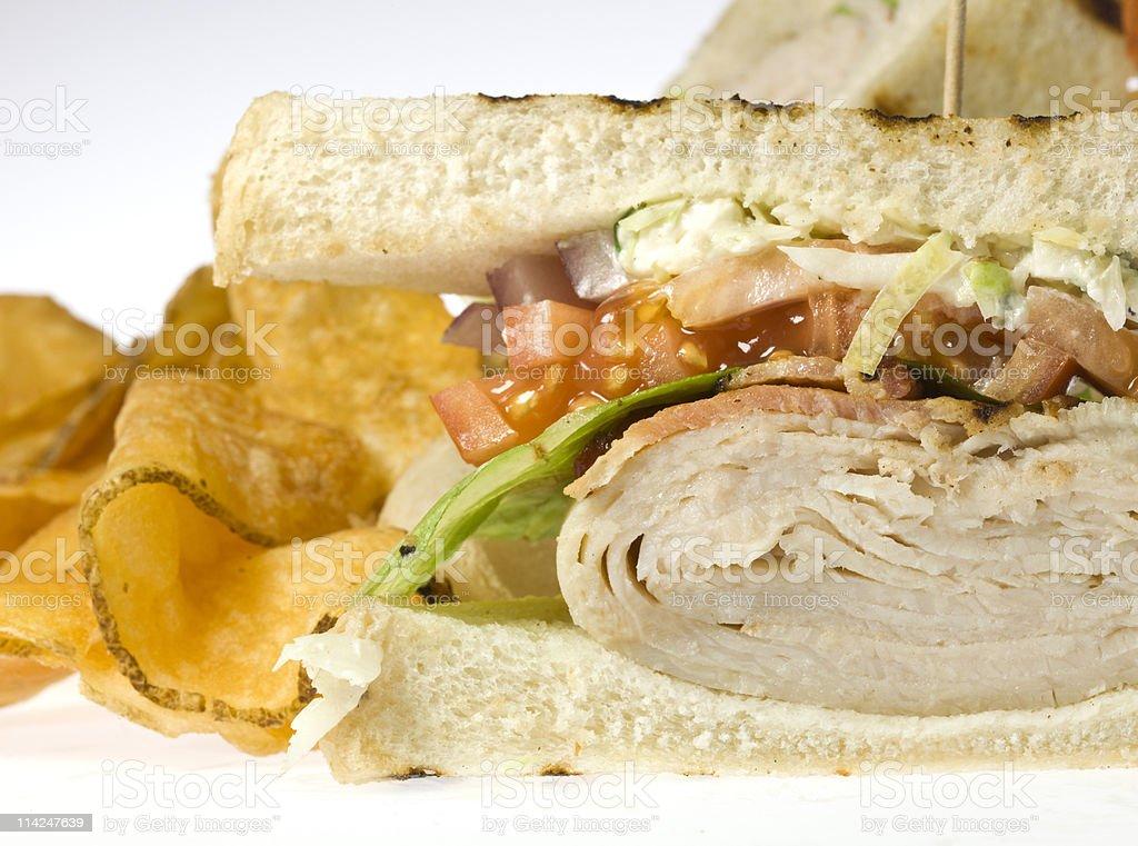 Club Sandwich Close up royalty-free stock photo