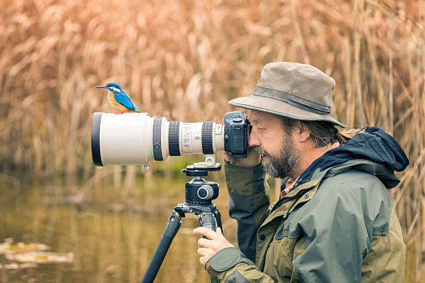Clumsy nature photographer dont find the kingfisher on the len picture id627069424?b=1&k=6&m=627069424&s=612x612&w=0&h= m 9tj cozumlv3t0by5ot9ud5wpomgdwuvps3le2ue=