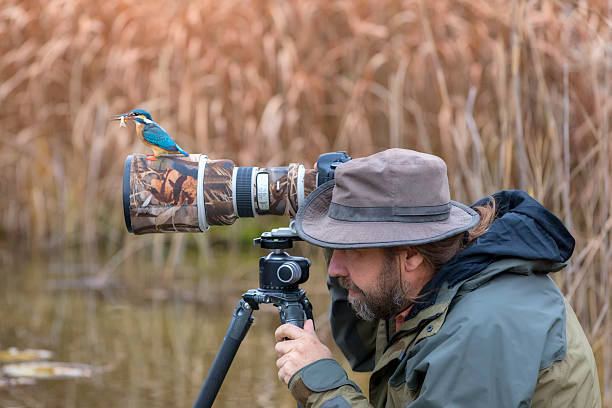 Clumsy nature photographer dont find the kingfisher on the lens picture id626056254?b=1&k=6&m=626056254&s=612x612&w=0&h=bmjhd8yte17i6r2gef8x0ddmc2lprvgklld9vyefzss=