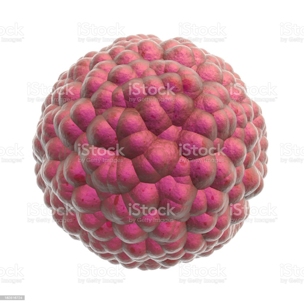 Cluster of cells - isolated with clipping path royalty-free stock photo