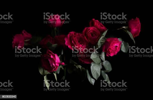 Cluster of dark pink garden roses picture id802833340?b=1&k=6&m=802833340&s=612x612&h=ts2ezftu7nvqpsa bcjno2u glxdpmiw5oekmq5j0es=