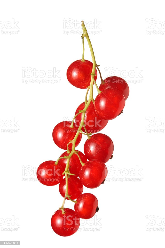 Cluster of fruit stock photo