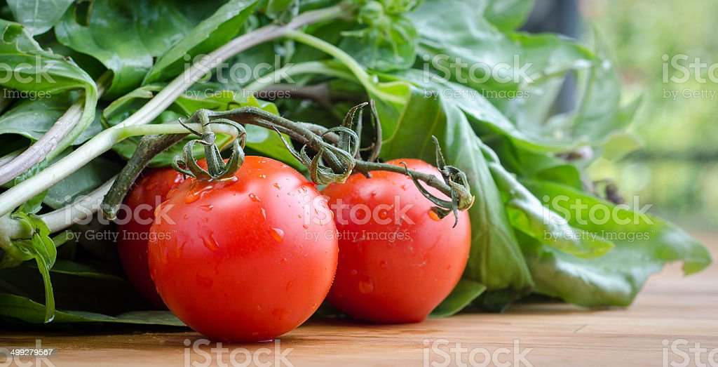 Cluster tomato's and fresh basil royalty-free stock photo