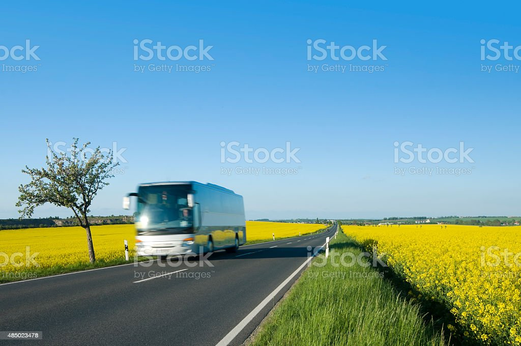 Coach on a country road in spring stock photo
