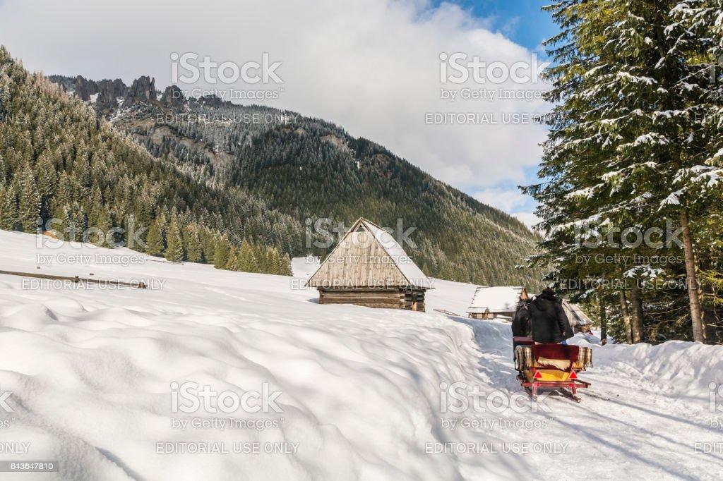 Coachman carriage sleigh. stock photo