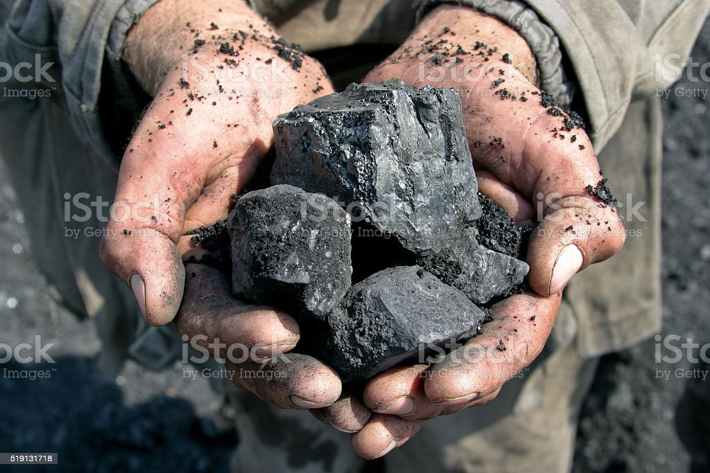 coal miner in the hands of stock photo