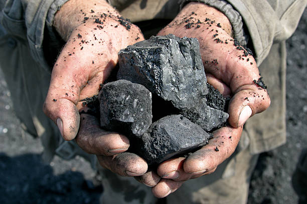 coal miner in the hands of - natural phenomenon stock photos and pictures