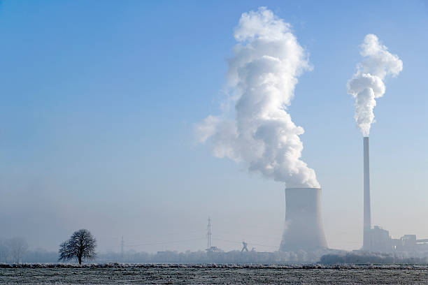 Coal-fired Power station with steaming cooling tower and lonesome tree stock photo