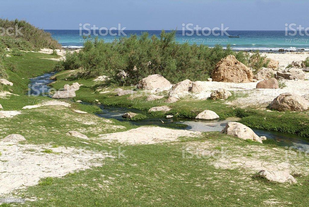 Coast at Arher on the island of Socotra stock photo