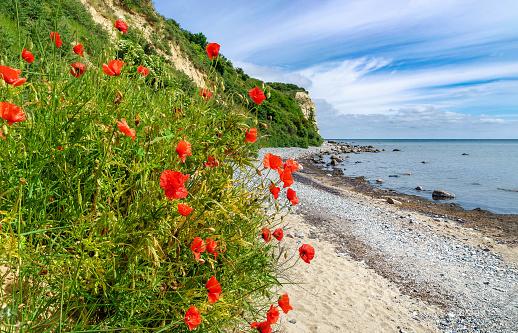 coast at Cape Arkona