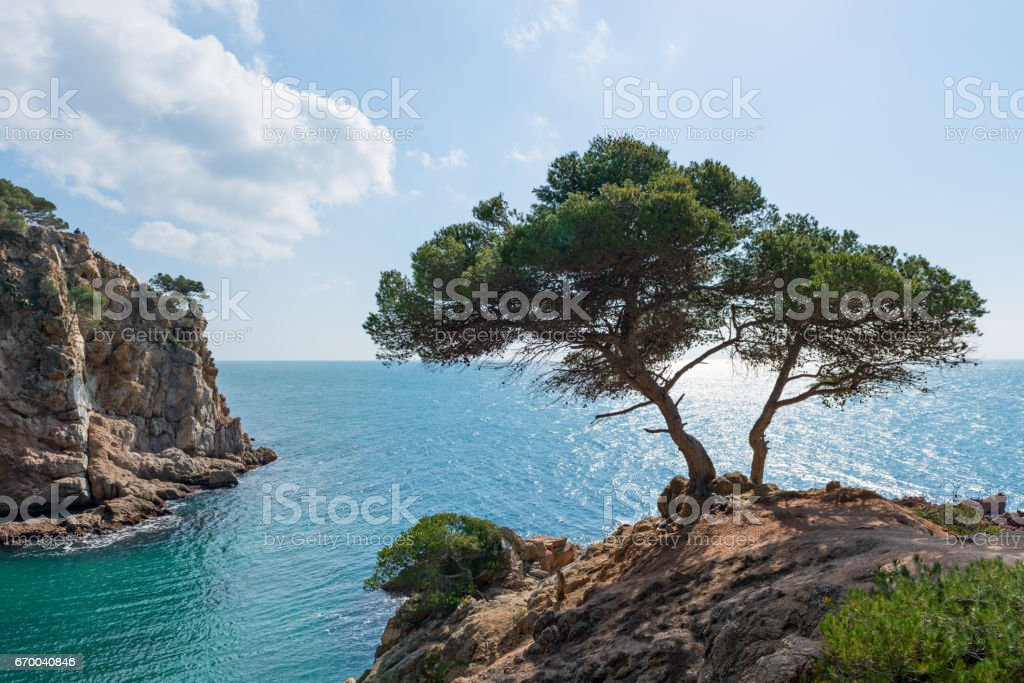 Coast Brave (Costa Brava) - Girona (Spain) stock photo