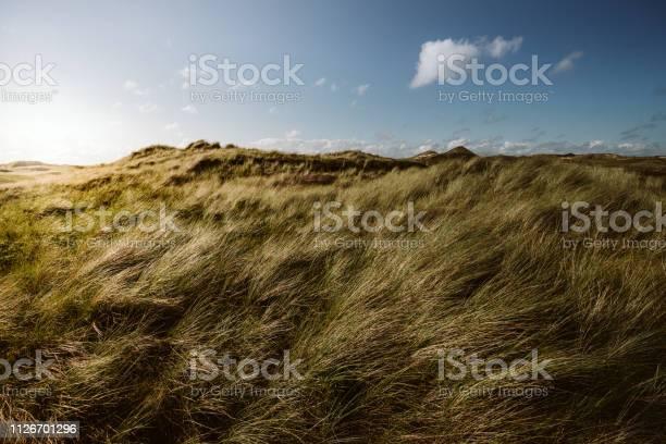 Photo of Coast Landscape Island of Amrum